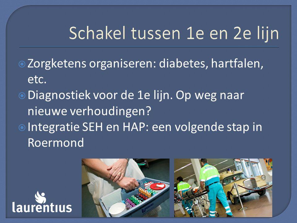 Schakel tussen 1e en 2e lijn  Zorgketens organiseren: diabetes, hartfalen, etc.  Diagnostiek voor de 1e lijn. Op weg naar nieuwe verhoudingen?  Int