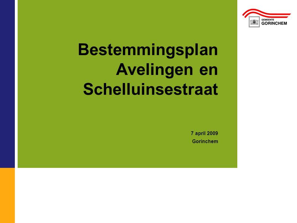 Bestemmingsplan Avelingen en Schelluinsestraat 7 april 2009 Gorinchem