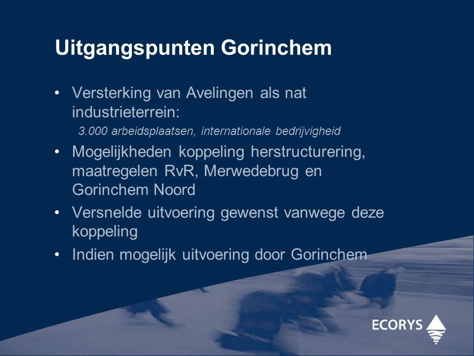 Uitgangspunten Gorinchem Versterking van Avelingen als nat industrieterrein: 3.000 arbeidsplaatsen, internationale bedrijvigheid Mogelijkheden koppeli