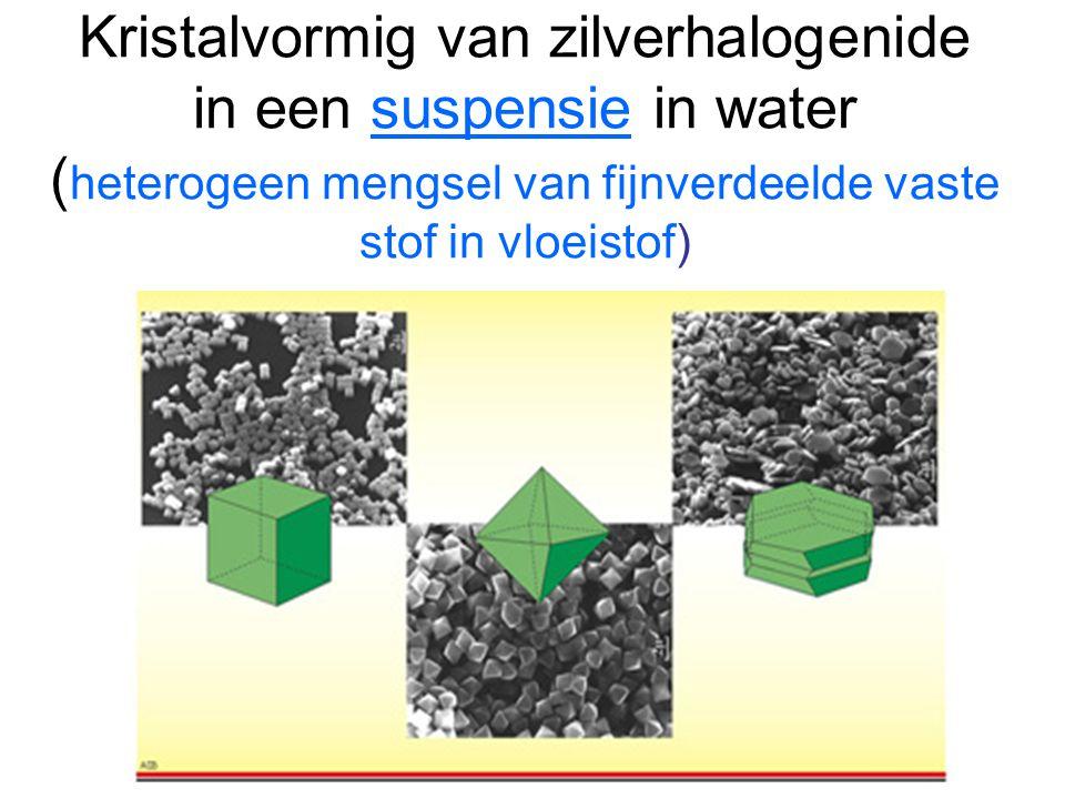 Kristalvormig van zilverhalogenide in een suspensie in water ( heterogeen mengsel van fijnverdeelde vaste stof in vloeistof)