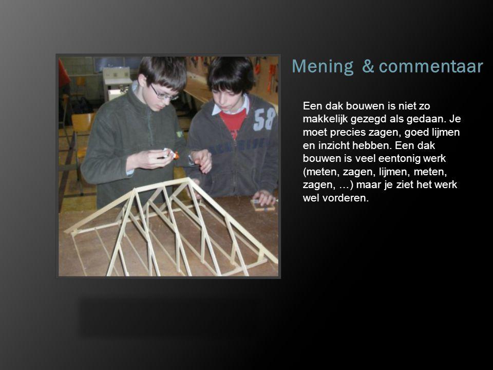 Mening & commentaar Een dak bouwen is niet zo makkelijk gezegd als gedaan. Je moet precies zagen, goed lijmen en inzicht hebben. Een dak bouwen is vee