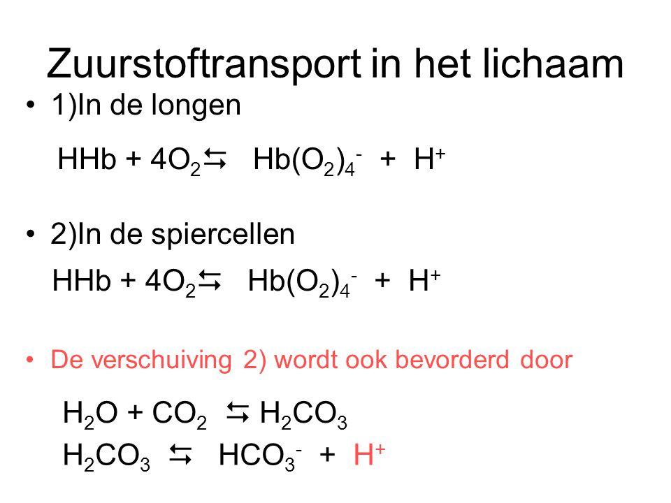 koolstofdioxidetransport in het lichaam 1)In de longen 2)In de spiercellen De verschuiving 1) wordt ook bevorderd door HHb + 4O 2  Hb(O 2 ) 4 - + H + H 2 O + CO 2  H 2 CO 3 H 2 CO 3  HCO 3 - + H + H 2 O + CO 2  H 2 CO 3 H 2 CO 3  HCO 3 - + H +
