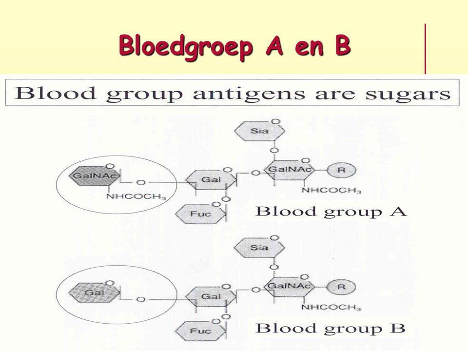 Bloedgroep A en B