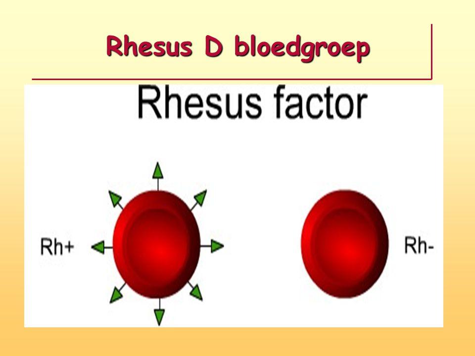 Rhesus D bloedgroep