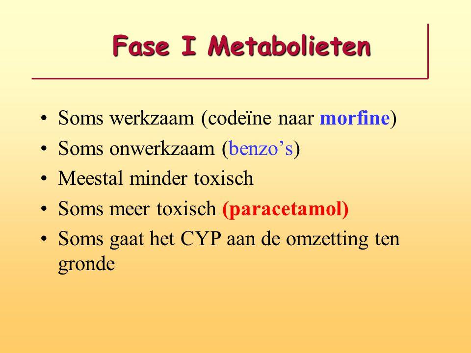 Fase I Metabolieten Fase I Metabolieten Soms werkzaam (codeïne naar morfine) Soms onwerkzaam (benzo's) Meestal minder toxisch Soms meer toxisch (parac