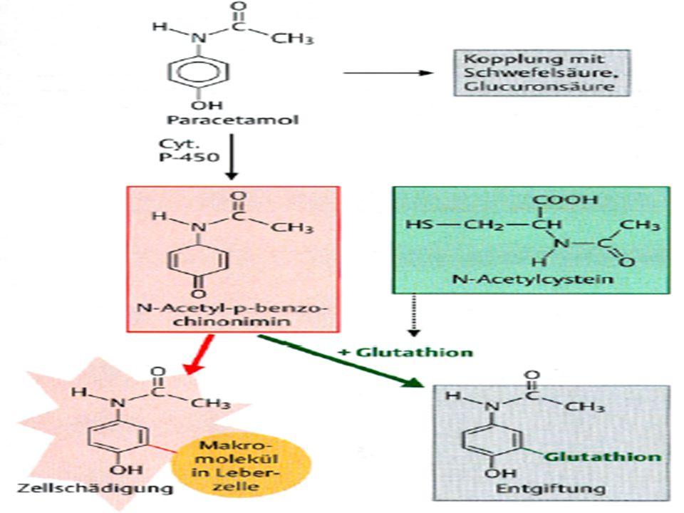 PARACETAMOL Sulfo-conjugatie (30%)Glucuro-conjugatie (55%) Glutation Cisteine + ac.