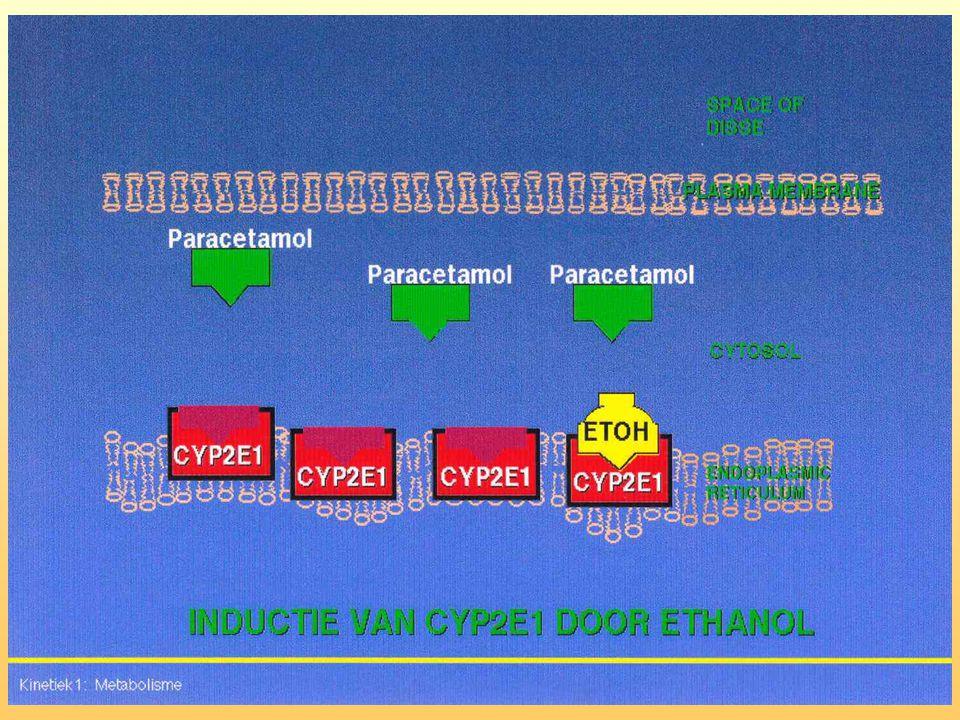 CYP enzyminductie en -competitie Bij chronisch alcohol: inductie van Cyp2E1 Bij acuut alcohol: competitie om Cyp2E1 Paracetamolvergiftiging: Chronisch alcohol meer radicaalvorming Acuut alcohol minder radicaalvorming