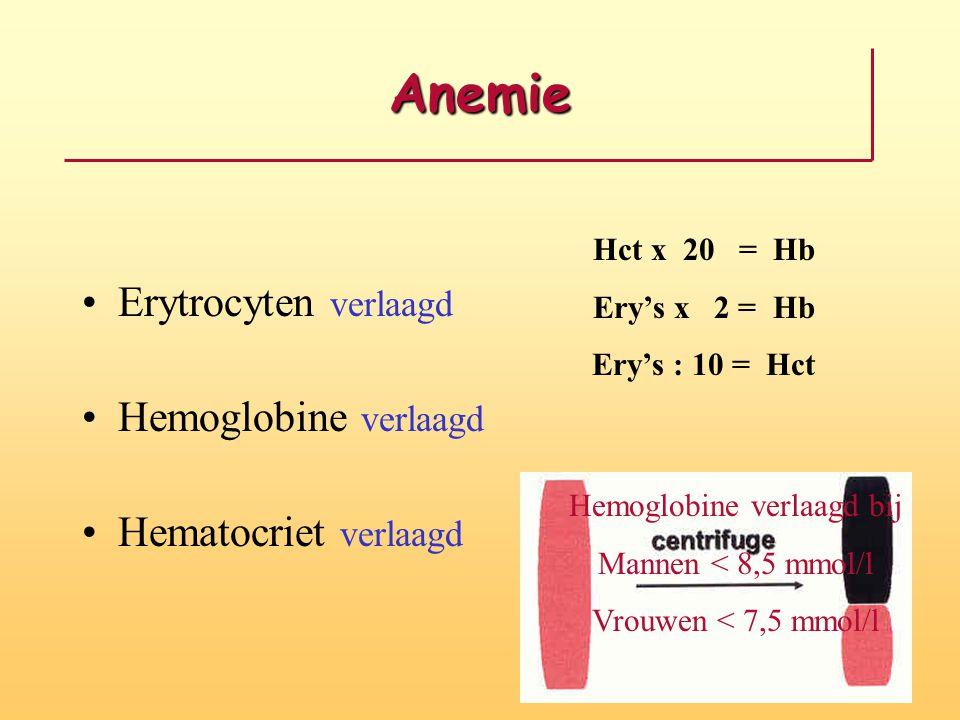 Anemie Erytrocyten verlaagd Hemoglobine verlaagd Hematocriet verlaagd Hct x 20 = Hb Ery's x 2 = Hb Ery's : 10 = Hct Hemoglobine verlaagd bij Mannen <