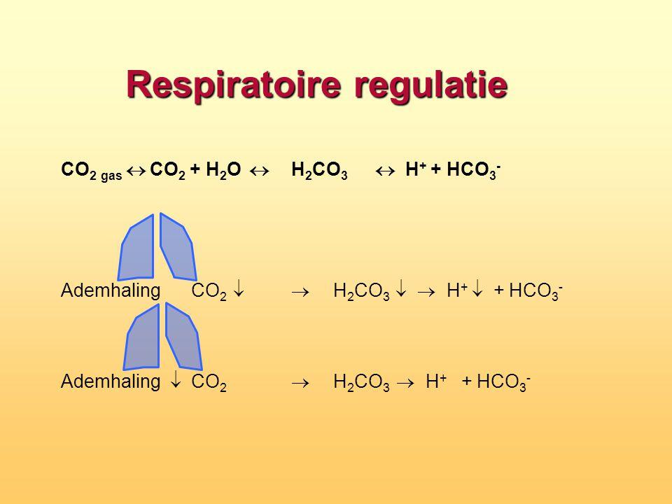 Respiratoire regulatie CO 2 gas  CO 2 + H 2 O  H 2 CO 3  H + + HCO 3 - Ademhaling  CO 2   H 2 CO 3  H +  + HCO 3 - Ademhaling  CO 2  H