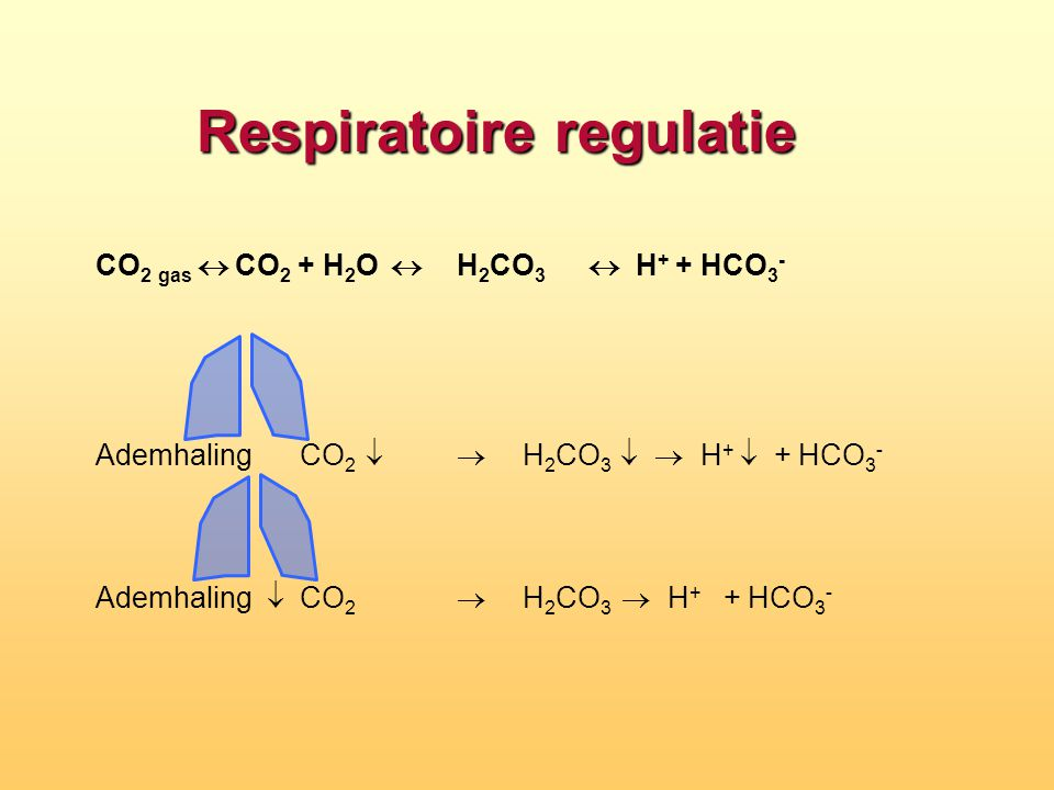 Respiratoire alkalose hypocapnie Symptomen - CZS (flow  ) : duizeligheid, verwardheid.