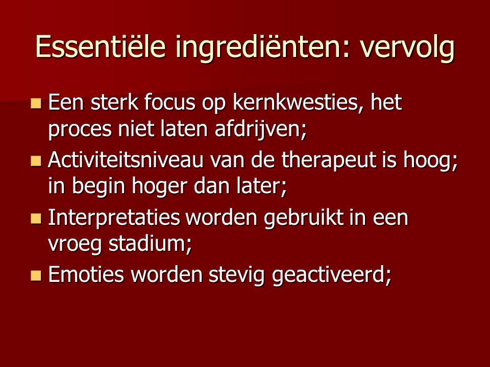 Essentiële ingrediënten: vervolg Een sterk focus op kernkwesties, het proces niet laten afdrijven; Een sterk focus op kernkwesties, het proces niet la