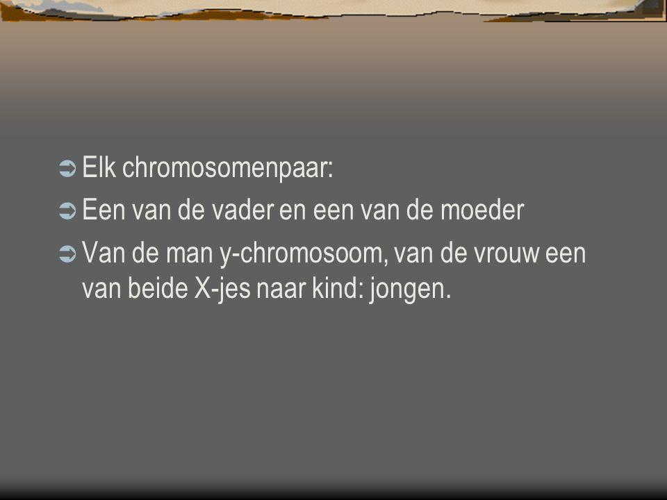  Elk chromosomenpaar:  Een van de vader en een van de moeder  Van de man y-chromosoom, van de vrouw een van beide X-jes naar kind: jongen.