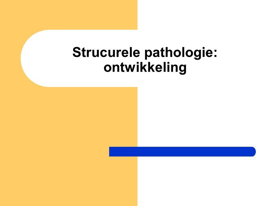 Strucurele pathologie: ontwikkeling