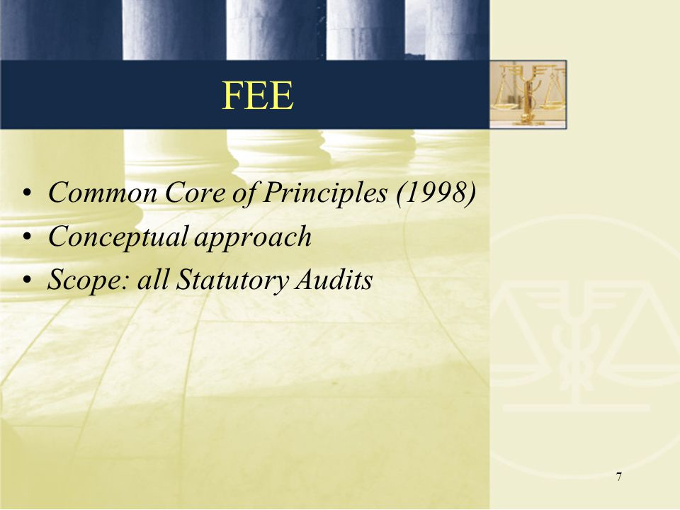 7 Common Core of Principles (1998) Conceptual approach Scope: all Statutory Audits FEE