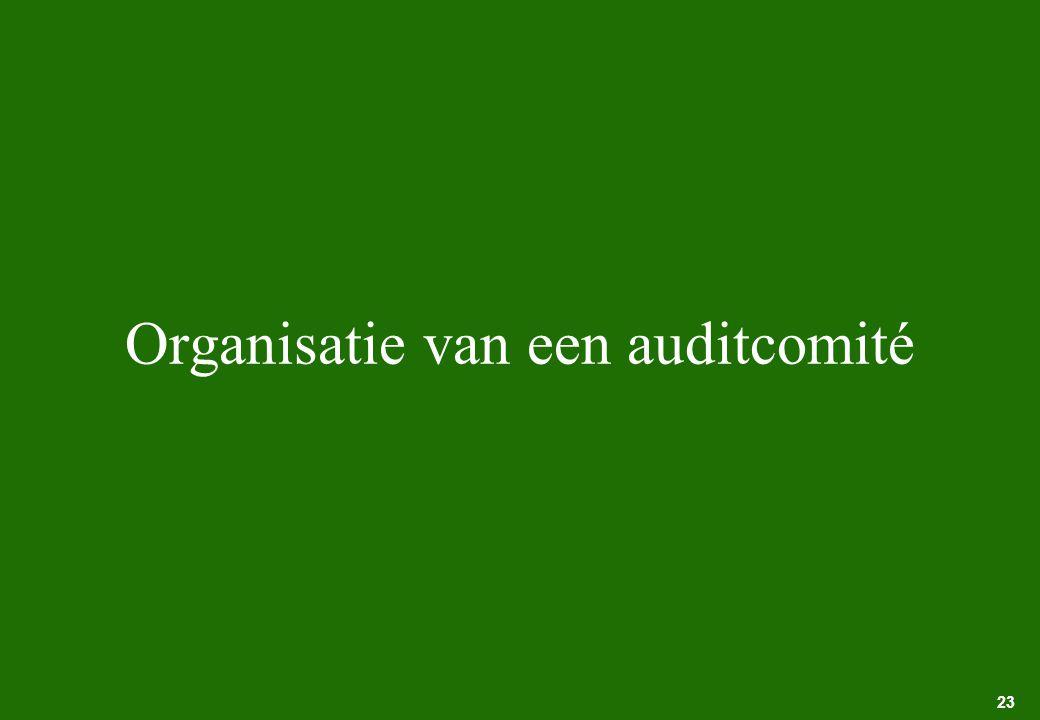 23 Organisatie van een auditcomité