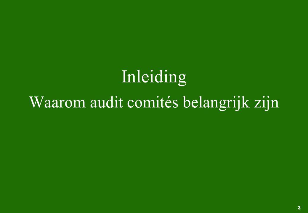 3 Inleiding Waarom audit comités belangrijk zijn