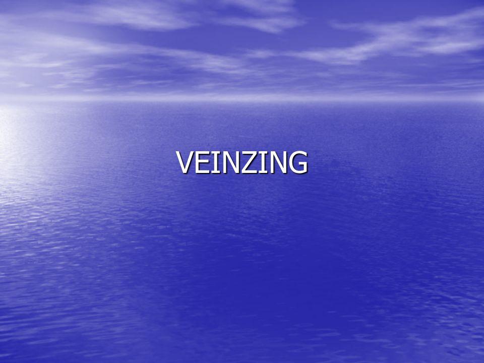 VEINZING