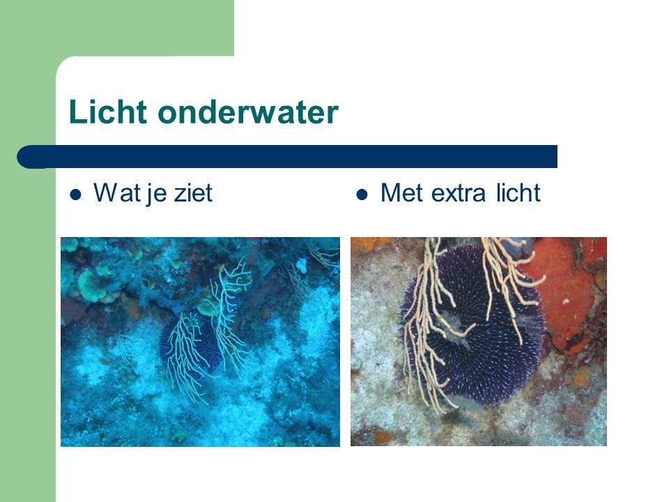 Licht onderwater Wat je ziet Met extra licht