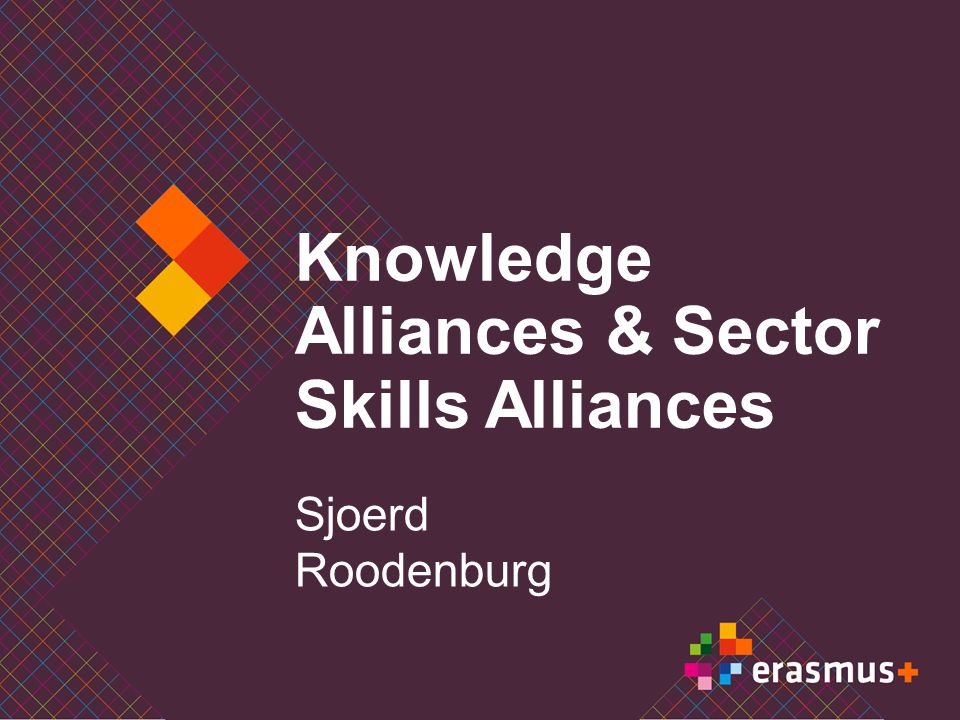 Erasmus+ Learning mobility Student mobility Staff mobility Master degree mobility (Erasmus master) Youth mobility Cooperation Strategic partnerships Knowledge alliances & Sector skills alliances IT platforms Capacity building Policy reform Open method of Coordination & European Semester EU tools Policy dialogue