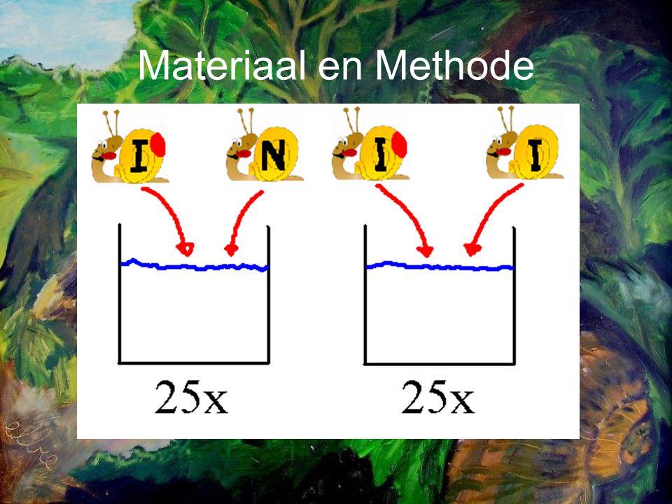 Resultaten Geïsoleerde slakkenGeïsoleerde en niet-geisoleerde slak Aantal paren dat paargedrag vertoonden 2322 Aantal pogingen tot paren2,56 (1,08)3,44 (2,4) Aantal gefaalde pogingen1,87 (1,01)3,3 (2,5) Tijdsduur gefaalde poging (min)15,6 (17,3)4,0 (4,8) Tijdsduur tot copulatiegedrag (min)39,4 (25,1)23 (20,6) Tijdsduur tot copulatie (min)47,6 (29,3)42,3 (18,8) Percentage rood boven64,7%80,2%