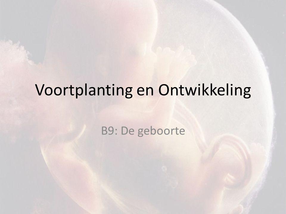 Voortplanting en Ontwikkeling B9: De geboorte
