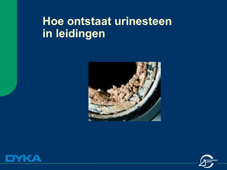 Hoe ontstaat urinesteen in leidingen