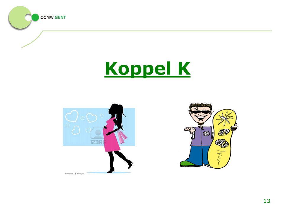 13 Koppel K