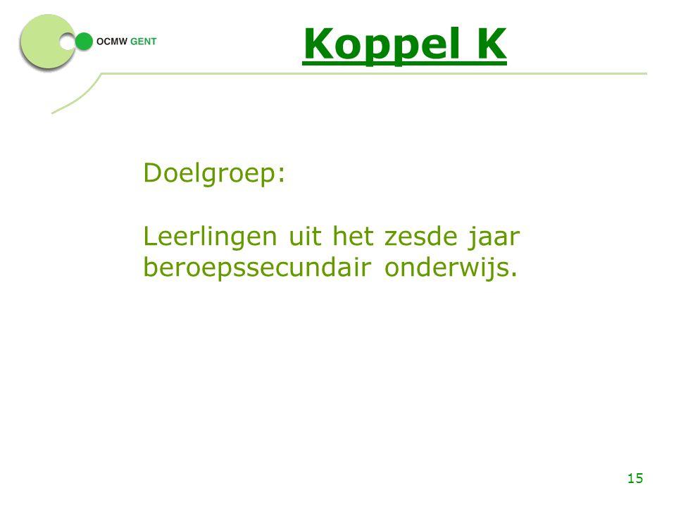 15 Koppel K Doelgroep: Leerlingen uit het zesde jaar beroepssecundair onderwijs.