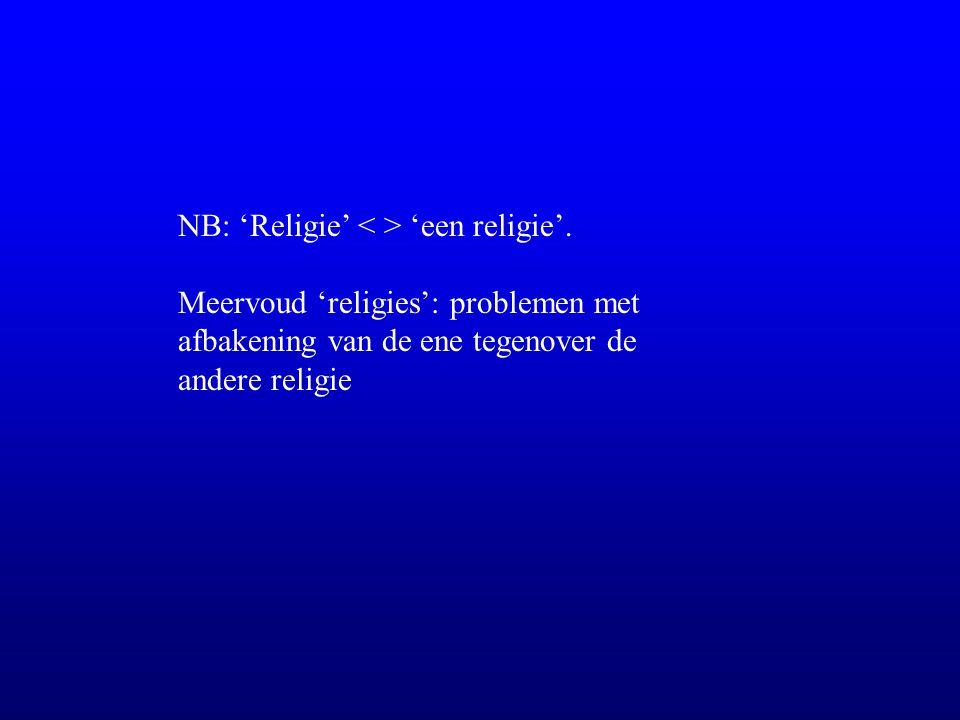 NB: 'Religie' 'een religie'. Meervoud 'religies': problemen met afbakening van de ene tegenover de andere religie