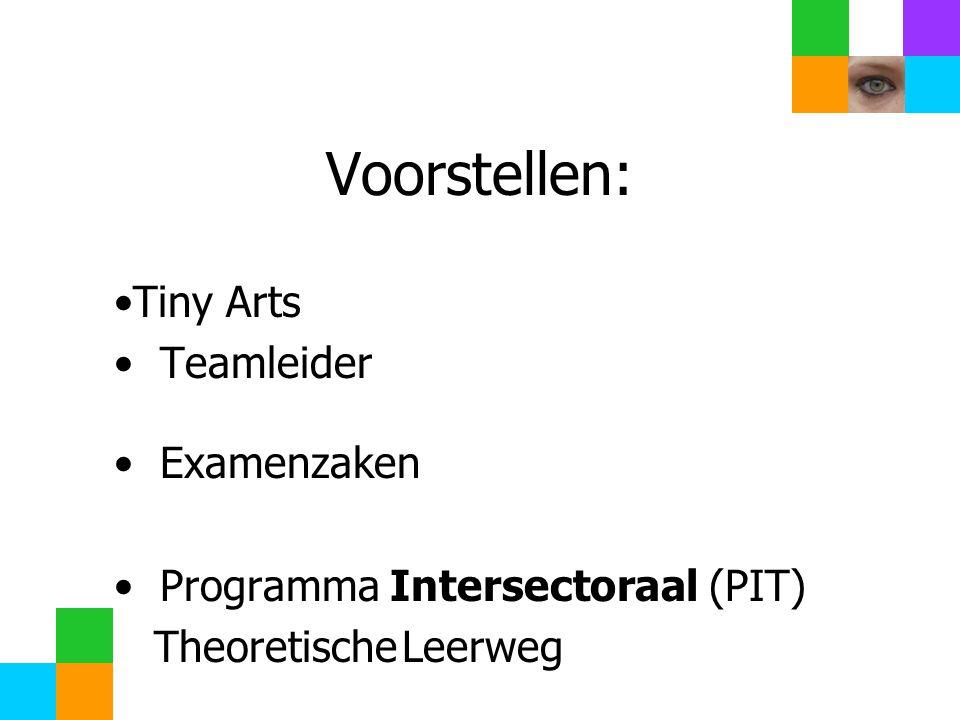 Voorstellen: Tiny Arts Teamleider Examenzaken Programma Intersectoraal (PIT) TheoretischeLeerweg Welkom in (stam)lokaal mentor