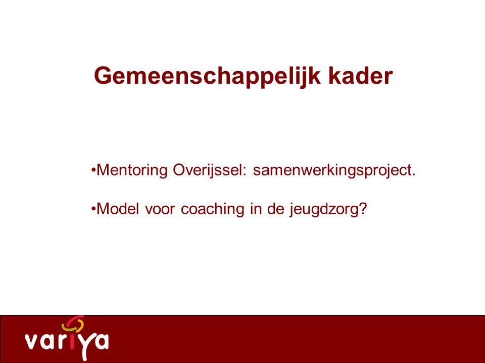 Variya leeft. Gemeenschappelijk kader Mentoring Overijssel: samenwerkingsproject.