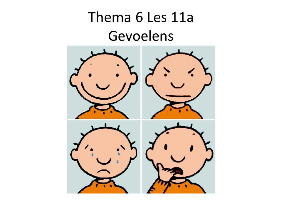 Thema 6 Les 11a Gevoelens