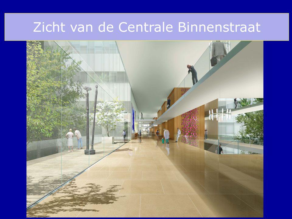 Zicht van de Centrale Binnenstraat