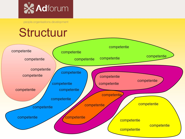 Structuur competentie