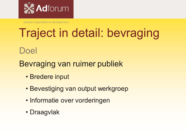 Traject in detail: bevraging Doel Bevraging van ruimer publiek Bredere input Bevestiging van output werkgroep Informatie over vorderingen Draagvlak
