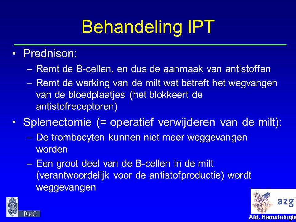 Afd. Hematologie umcg Behandeling IPT Prednison: –Remt de B-cellen, en dus de aanmaak van antistoffen –Remt de werking van de milt wat betreft het weg