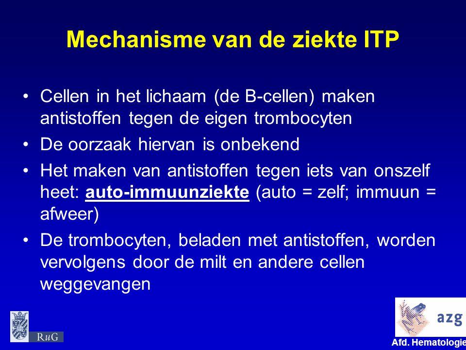 Afd. Hematologie umcg Mechanisme van de ziekte ITP Cellen in het lichaam (de B-cellen) maken antistoffen tegen de eigen trombocyten De oorzaak hiervan