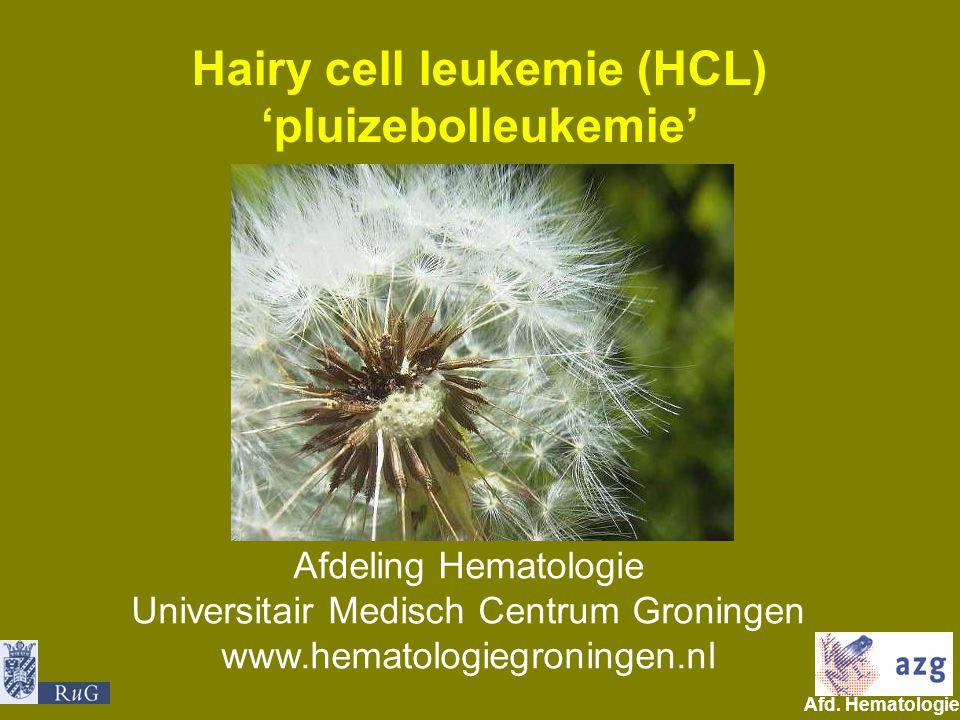 Afd. Hematologie umcg Hairy cell leukemie (HCL) 'pluizebolleukemie' Afdeling Hematologie Universitair Medisch Centrum Groningen www.hematologiegroning
