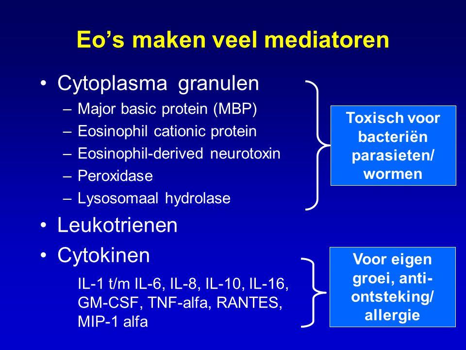 Eo's maken veel mediatoren Cytoplasma granulen –Major basic protein (MBP) –Eosinophil cationic protein –Eosinophil-derived neurotoxin –Peroxidase –Lys