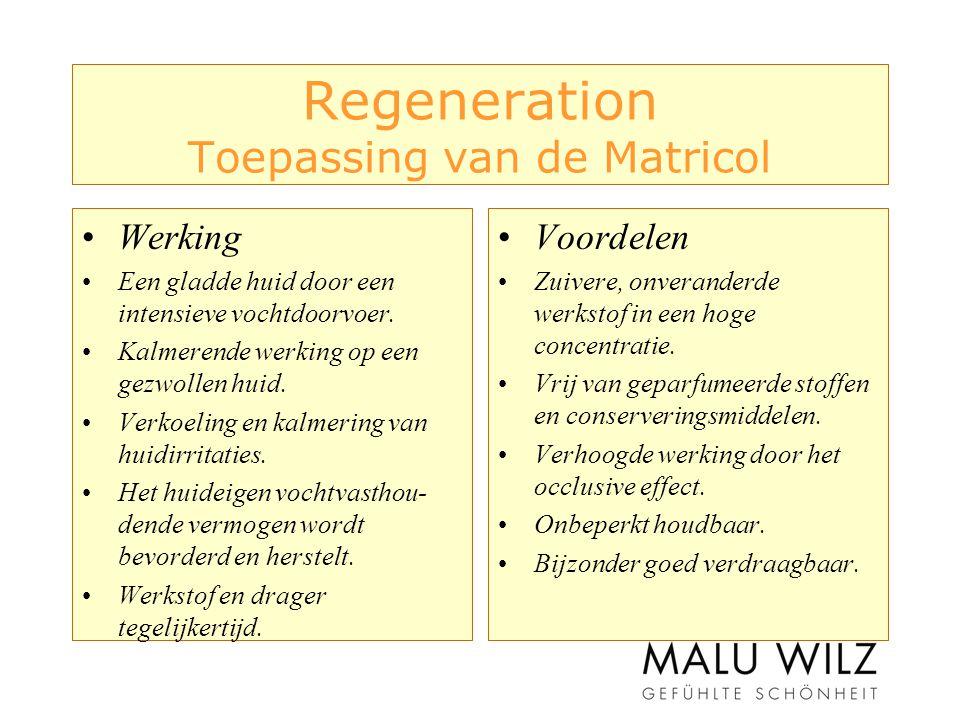 Regeneration Toepassing van de Matricol Werking Een gladde huid door een intensieve vochtdoorvoer.