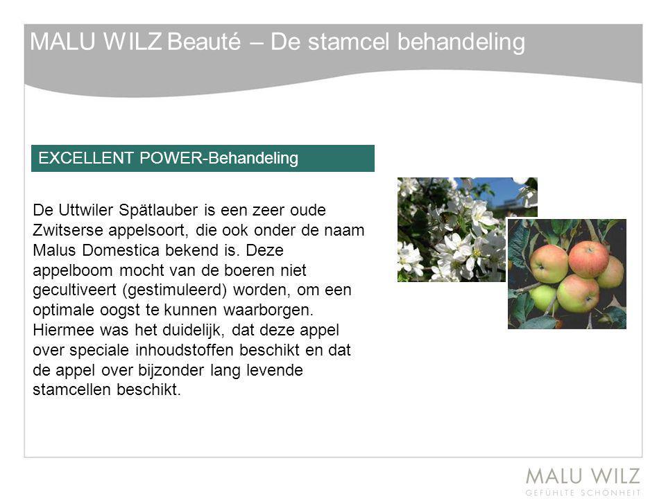 EXCELLENT POWER-Behandeling De Uttwiler Spätlauber is een zeer oude Zwitserse appelsoort, die ook onder de naam Malus Domestica bekend is. Deze appelb