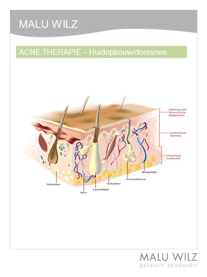 ACNE THERAPIE – Huidopbouw/doorsnee MALU WILZ