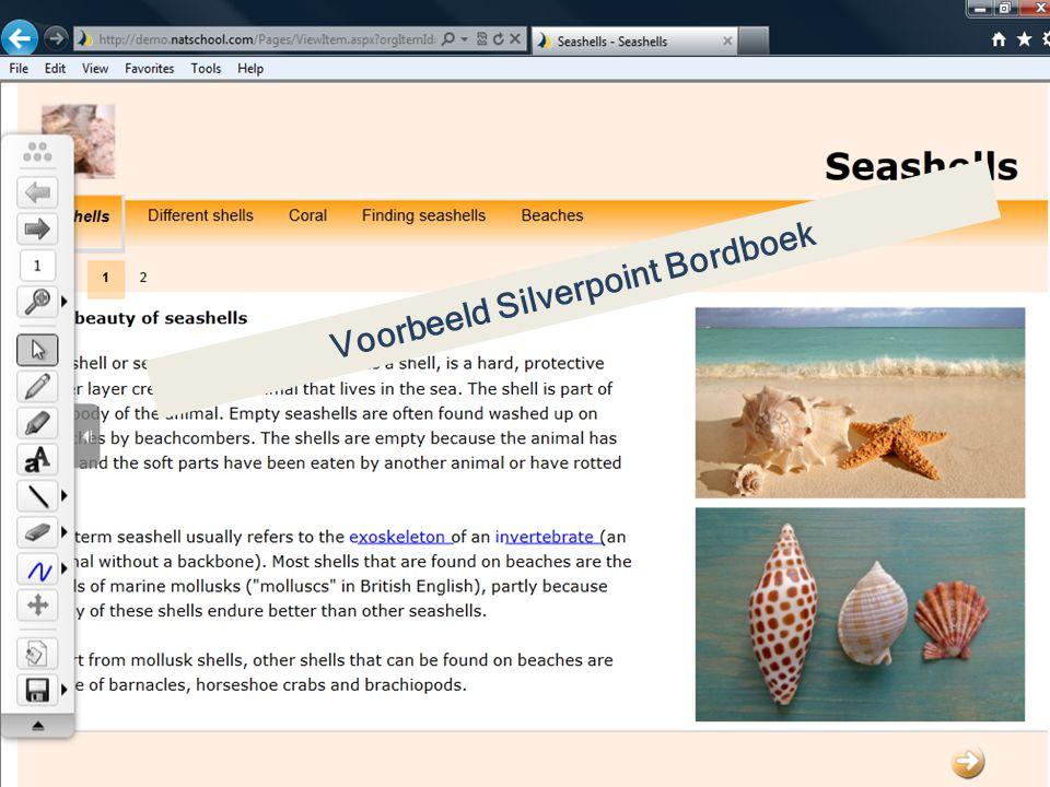 Voorbeeld Silverpoint Bordboek