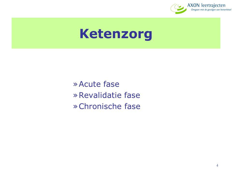 4 Ketenzorg »Acute fase »Revalidatie fase »Chronische fase