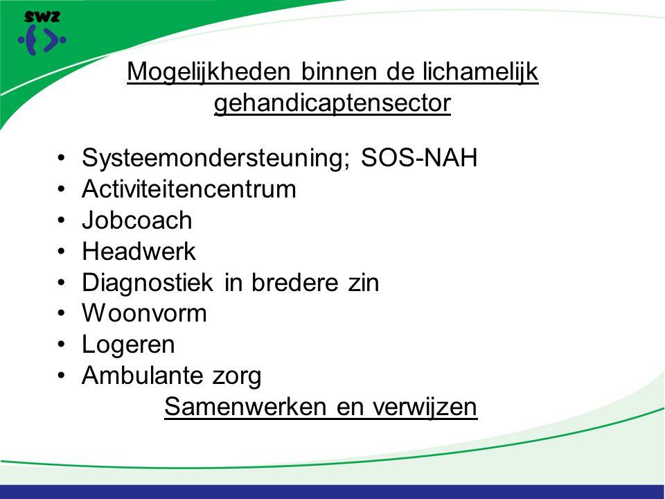 Mogelijkheden binnen de lichamelijk gehandicaptensector Systeemondersteuning; SOS-NAH Activiteitencentrum Jobcoach Headwerk Diagnostiek in bredere zin