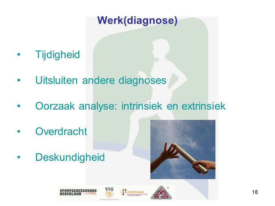 16 Werk(diagnose) Tijdigheid Uitsluiten andere diagnoses Oorzaak analyse: intrinsiek en extrinsiek Overdracht Deskundigheid
