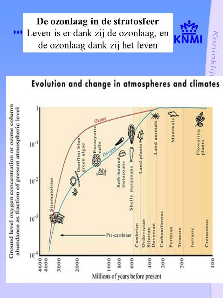 De ozonlaag in de stratosfeer Leven is er dank zij de ozonlaag, en de ozonlaag dank zij het leven