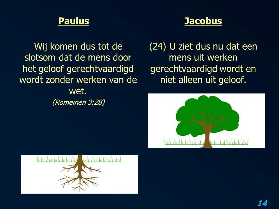 14 Paulus Wij komen dus tot de slotsom dat de mens door het geloof gerechtvaardigd wordt zonder werken van de wet.