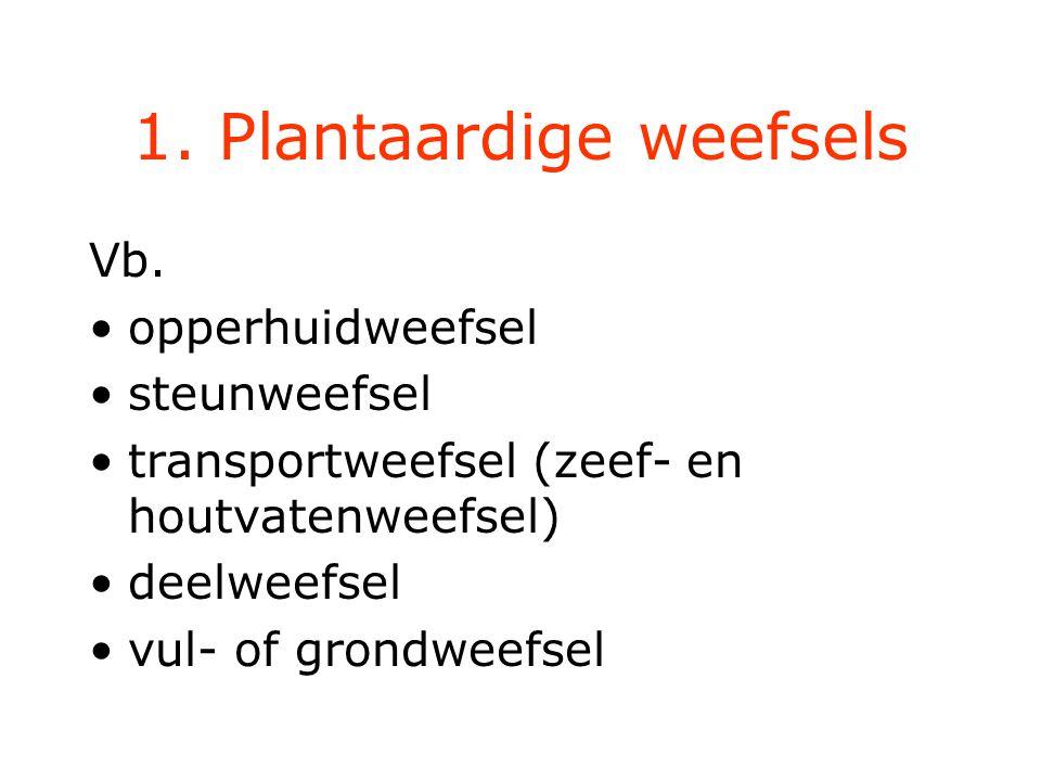 1.Plantaardige weefsels Vb.