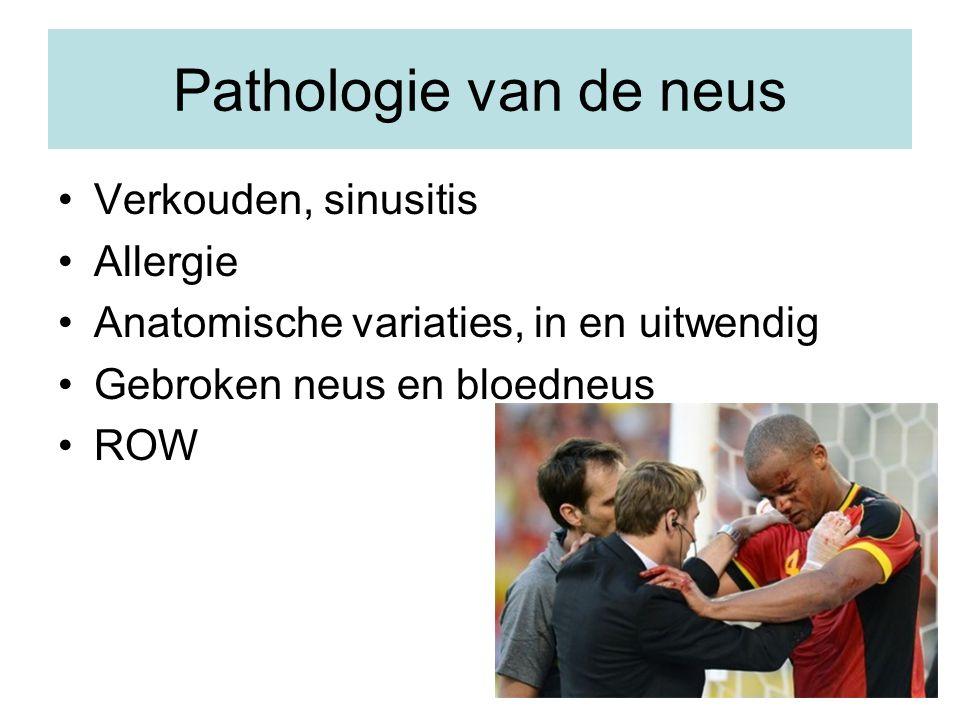 Pathologie van de neus Verkouden, sinusitis Allergie Anatomische variaties, in en uitwendig Gebroken neus en bloedneus ROW